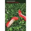Si belle mais si morte / Rosa Mogliasso